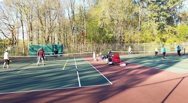 pickleball Websize
