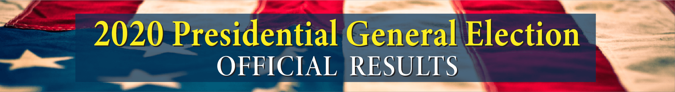 2020 General Official Results banner