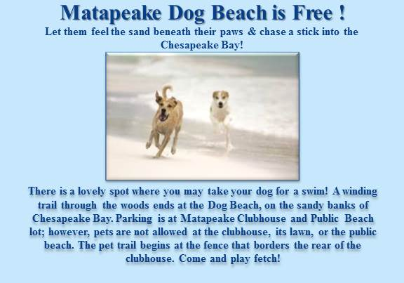 matapeake DOGG beach Double-wide (2)