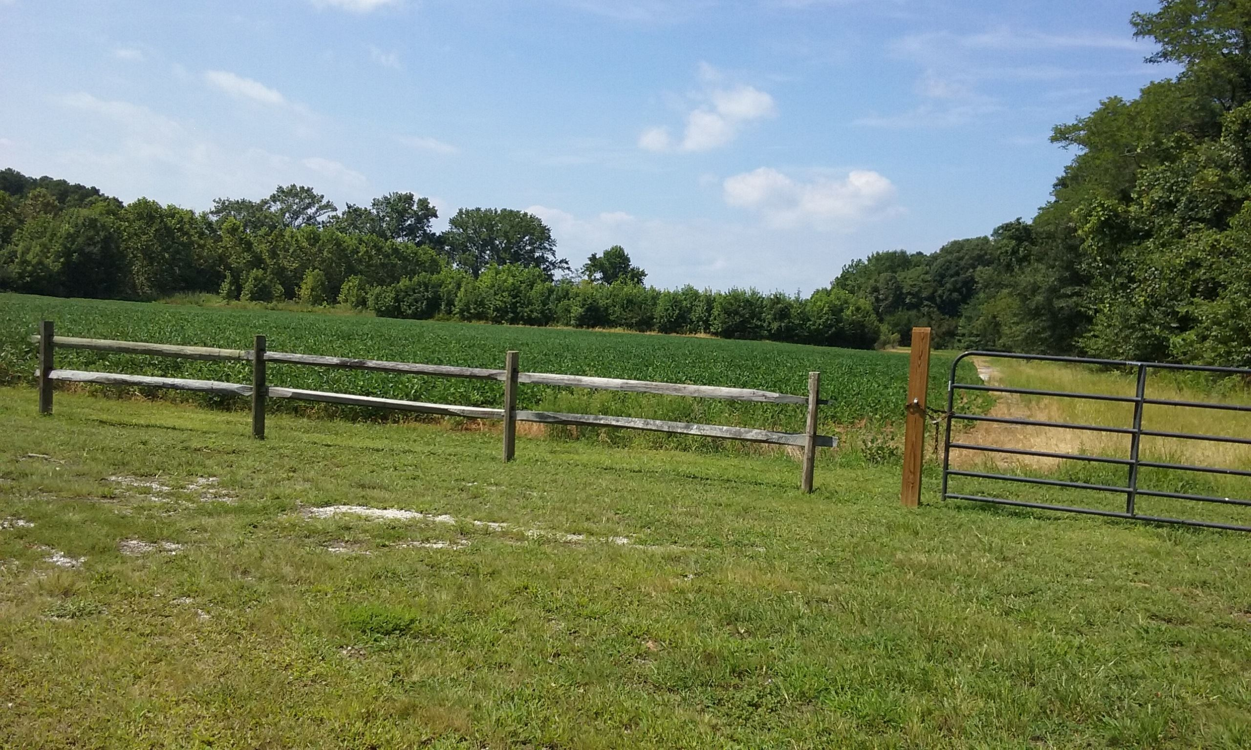 Equestrian Trail at Conquest Preserve