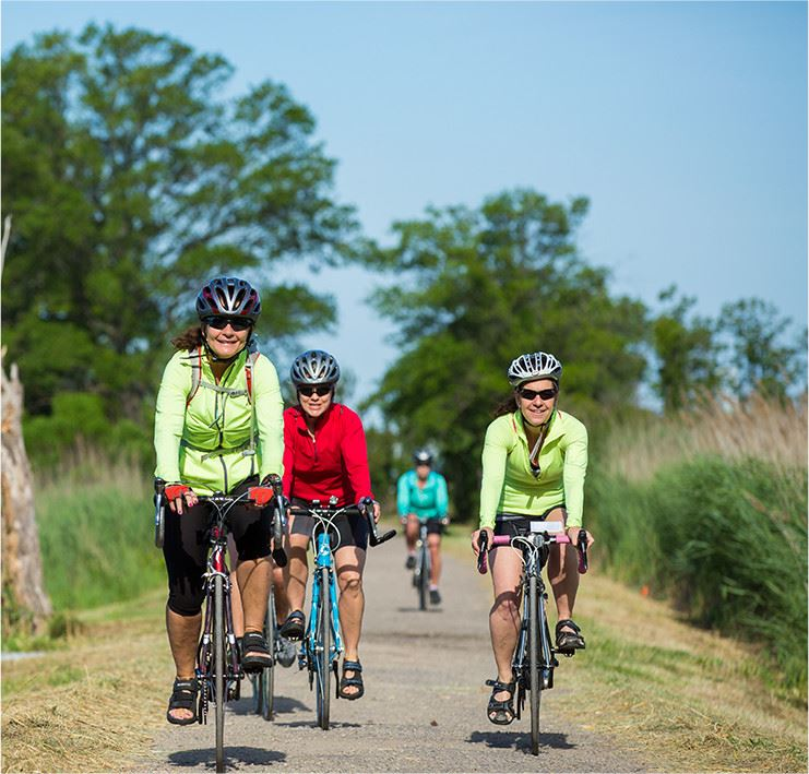 Women riding bikes down a path