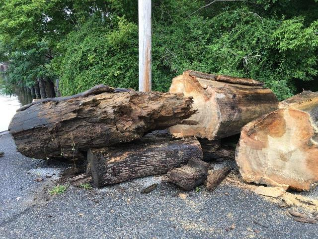 Logs retrieved by DNR at Matapeake July 30 Websize